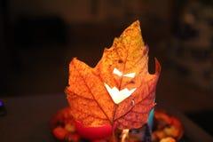 Foglia spaventosa degli occhi di Halloween Immagine Stock Libera da Diritti