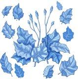 Foglia stilizzata blu Immagine Stock Libera da Diritti