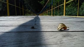 Foglia sul ponte Fotografie Stock