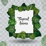 Foglia tropicale di estate stile del taglio della carta Illustrazione EPS10 di vettore Immagini Stock