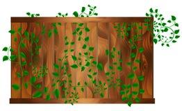 Foglia verde Fotografie Stock Libere da Diritti
