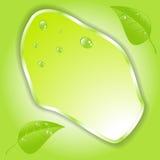 Foglia verde con spazio per testo Vettore EPS10 Immagini Stock