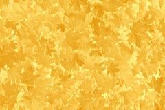 Fogliame arancio e giallo dell'albero di acero fotografia stock libera da diritti