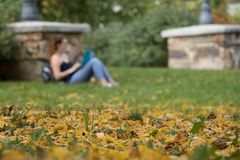 Fogliame, caduta e vita della città universitaria Fotografie Stock