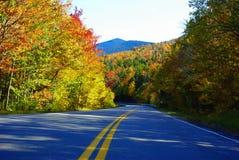 Fogliame in del New Hampshire Fotografie Stock Libere da Diritti