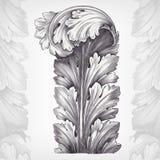 Fogliame dell'ornamento del acanthus dell'incisione dell'annata Fotografia Stock