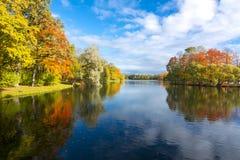 Fogliame di autunno con la riflessione in acqua Fotografie Stock