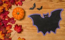Fogliame di autunno con la zucca e un pipistrello Immagini Stock