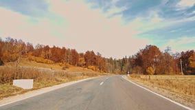 Fogliame di autunno in foresta con la strada video d archivio