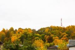 Fogliame di autunno in Gorokhovets Fotografia Stock Libera da Diritti