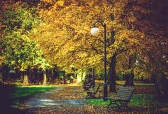 Fogliame di autunno in parco Fotografia Stock Libera da Diritti