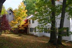 Fogliame di caduta al Vermont, U.S.A. immagini stock libere da diritti