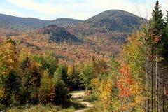 Fogliame di caduta in del New Hampshire Fotografia Stock Libera da Diritti