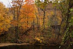 Fogliame di caduta del Vermont II fotografie stock libere da diritti