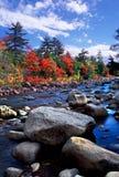 Fogliame di caduta della Nuova Inghilterra Fotografia Stock