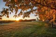 Fogliame di caduta e di alba su Art Hill, St. Louis, Missouri fotografia stock libera da diritti