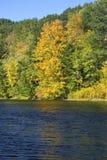 Fogliame di caduta sul fiume di Westfield, Massachusetts Fotografie Stock