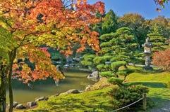 Fogliame e stagno di caduta in giardino giapponese Fotografia Stock
