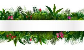 fogliame tropicale Priorità bassa di disegno floreale Immagini Stock