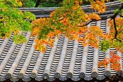 Foglie in Automn con il tetto tradizionale asiatico fotografia stock libera da diritti