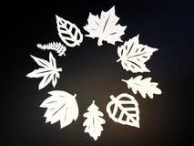 Foglie bianche degli alberi. Taglio di carta. Fotografia Stock
