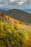 Foglie brillantemente colorate di caduta su un Ridge del supporto appalachiano Fotografie Stock Libere da Diritti