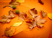 Foglie cadute - fogliame sull'ombrello arancio Fotografia Stock