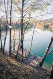 Foglie Colourful su una passerella, autunno, spazio della copia fotografia stock libera da diritti