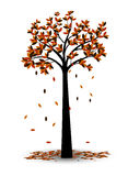 Foglie decorative di Autumn Tree Silhouette With Brown Fotografia Stock Libera da Diritti