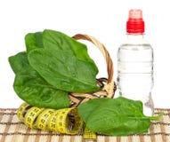 Foglie degli spinaci Fotografie Stock