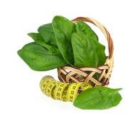 Foglie degli spinaci Immagine Stock Libera da Diritti