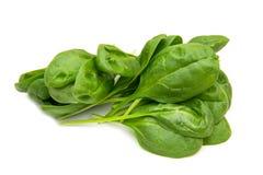Foglie degli spinaci Fotografie Stock Libere da Diritti