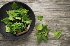 Foglie degli spinaci in ciotola Immagine Stock