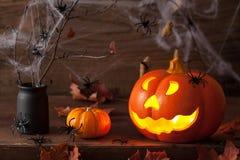 Foglie dei ragni della zucca della lanterna di Halloween Jack O Fotografie Stock