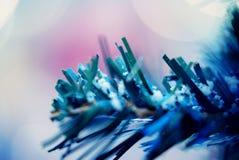 Foglie del pino fatte uomo di Snowy Fotografia Stock
