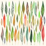 Foglie dell'acquerello messe Fotografia Stock