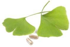 Foglie dell'albero di Ginko con le pillole Fotografia Stock