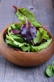 Foglie dell'insalata Fotografia Stock