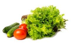 Foglie dell'insalata del cetriolo e del pomodoro Fotografia Stock