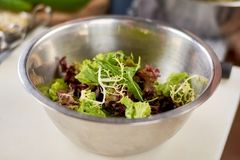Foglie dell'insalata mista in ciotola inossidabile Fotografia Stock Libera da Diritti