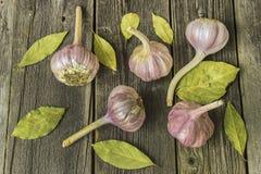 Foglie della baia e dell'aglio sulla tavola Fotografia Stock