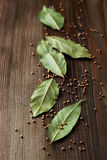 Foglie della baia e semi di senape Immagine Stock
