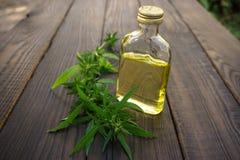 Foglie della cannabis e bottiglia dell'olio di canapa su superficie di legno immagini stock