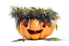 Foglie della lampada e della canapa, della cannabis e della marijuana della presa della zucca di Halloween fotografia stock