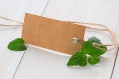 Foglie della menta fresca con l'etichetta in bianco fotografia stock