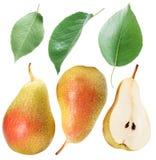 Foglie della pera e frutta verdi della pera Percorso di ritaglio Fotografia Stock Libera da Diritti