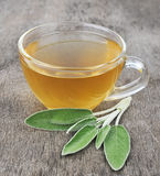 Foglie della salvia e tè prudente Fotografia Stock