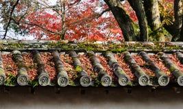 Foglie di acero cadute di autunno sul tetto giapponese del tempio Fotografie Stock