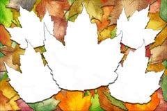 Foglie di acero di autunno con gli spazi bianchi del foglio immagini stock