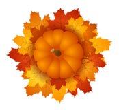 Foglie di acero di autunno e della zucca. Ill di ENV 10 Fotografie Stock